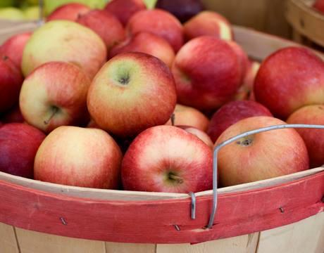 apples12
